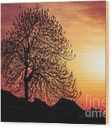 Silhouette Of Tree Wood Print