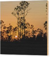 Silhouette Of Trees At Sunset Wood Print
