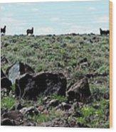 Silhouette Of Twin Peaks Wild Horses Ne California Wood Print