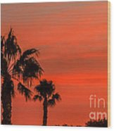 Silhouetted Palm Trees Wood Print