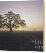 Silhouetted Tree In Field Sunrise Wood Print