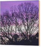 Silhouettes Against Pink Skies Wood Print