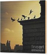 Silhouettes Of The Cormorants Wood Print