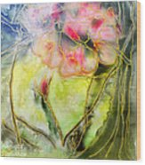 Silky Almond Flower Wood Print