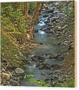 Silky Stream In Rain Forest Landscape Art Prints Wood Print