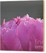 Silky Pink Petals Wood Print