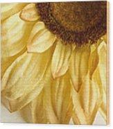 Silky Sun Wood Print