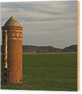 Silo Old Brick 3 Wood Print