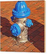Silver And Blue Hydrant Wood Print