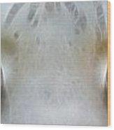 Silver Eyes 7943-fractal Wood Print