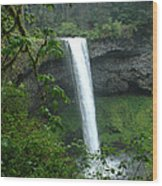 Silver Falls 1 In Oregon Wood Print