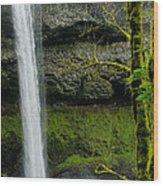 Silver Falls 3 Wood Print