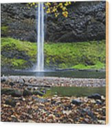 Silver Falls In Fall Wood Print