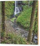 Silver Falls Oregon Wood Print