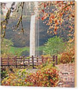 Silver Falls State Park Wood Print