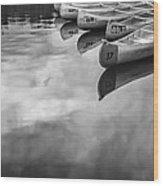Silver Fish IIi Wood Print