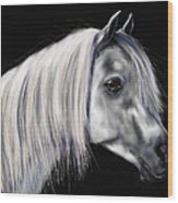 Grey Arabian Mare Painting Wood Print