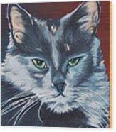 Silver Grey Cat Portrait Wood Print