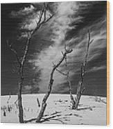 Silver Lake Dune With Dead Trees And Cirrus Clouds In Black And White Wood Print