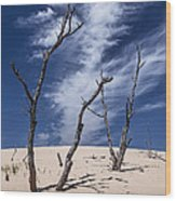 Silver Lake Dune With Dead Trees And Cirrus Clouds Wood Print