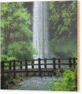 Silver Lake Falls Wood Print
