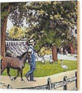 Silver Lake Mill-shenandoah Valley Wood Print