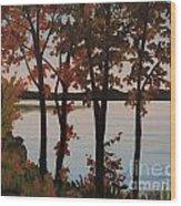 Silver Lake Through Autumn Trees Wood Print