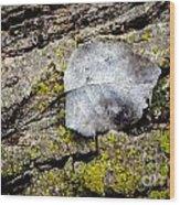Silver Leaf Wood Print