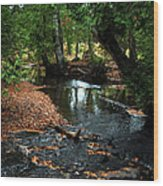 Silver River Channel In Autumn Wood Print