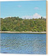 Silver Sands Of Morar Panorama Wood Print