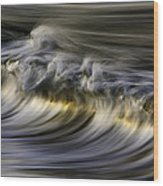 Silver Sheen 73a3145 Wood Print