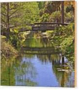 Silver Springs Florida Wood Print