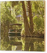 Silver Springs Glass Bottom Boats Wood Print by Christine Till