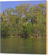 Silver Springs - Old-style Florida Wood Print by Christine Till