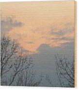 Silver Springs Sky Wood Print by Jaime Neo