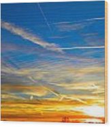 Silver Wing Sunset Wood Print