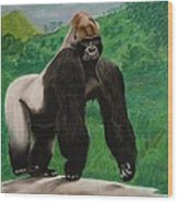 Silverback Gorilla Wood Print by David Hawkes