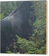 Silverback Side Profile Wood Print