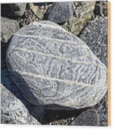 Beautifully Patterned Rock On The Beach In Alaska Wood Print