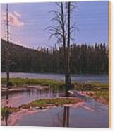 Simple Beauty Of Yellowstone Wood Print
