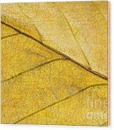 Simply Beech Wood Print