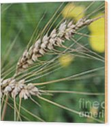 Simply Dried Grass Wood Print