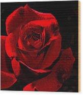 Simply Red Rose Wood Print