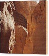 Sinai Desert  Canyon Region  Walking Path Egypt Wood Print