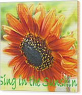 Sing In The Sunshine Wood Print