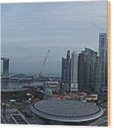 Singapore Skyline Wood Print