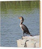 Singing Bird Wood Print