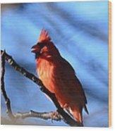 Singing Cardinal Wood Print