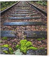 Singing In The Rain Wood Print by Debra and Dave Vanderlaan