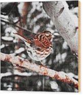 Singing In The Snowfall Wood Print